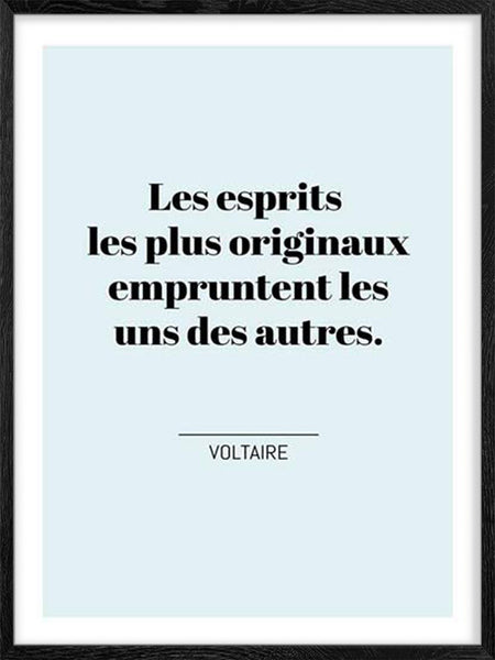Voltaire's Quote - French - Poster