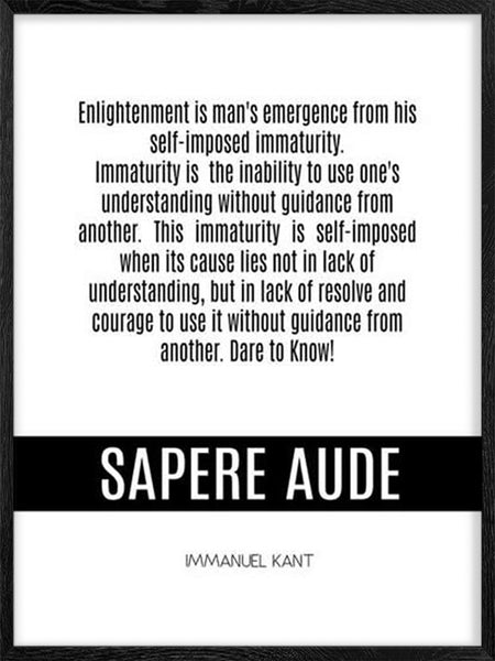 What's Enlightenment - Poster