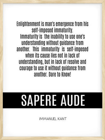 What's-Enlightenment-Kant-Quote-Philosophy-minimalist-wall-art-print-home-decor