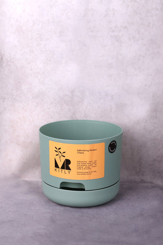 Mr Kitly x Decor 'Self Watering Pot' 170mm - Cabinet Green