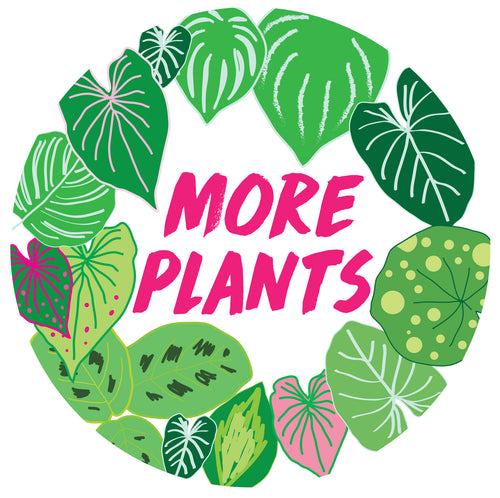More Plants Gift Card