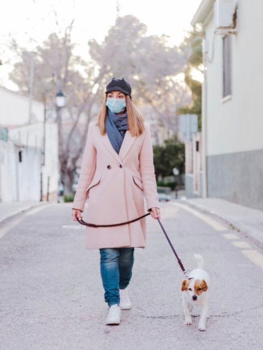How to Get Your Dog Used to You Wearing a Face Mask