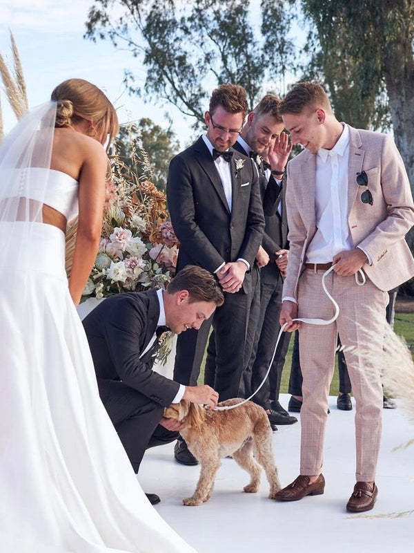 6 Stylish Ways to Include Your Dog in Your Wedding