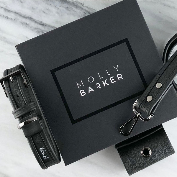 Sasha Collection Gift Box | Molly Barker Australia | Designer Dog Accessories