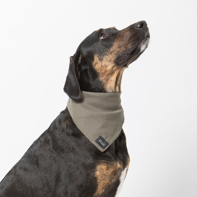 Sadie Dog Bandana | Molly Barker Australia | Designer Dog Accessories