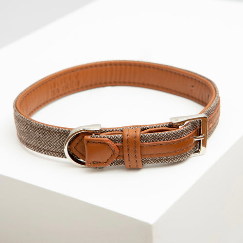 Hunter Dog Collar
