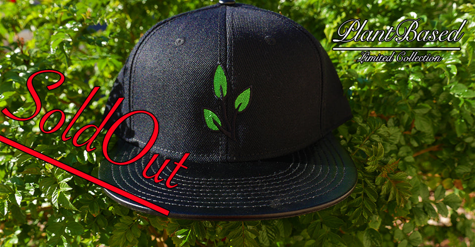 cc72a32a Plant Based Clothing Company Snap Back Cap – Plant Based Clothing Brand