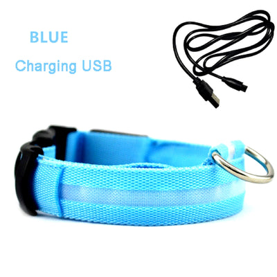 LED Rechargeable Dog Collar Blue