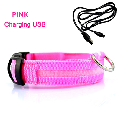 LED Rechargeable Dog Collar Pink