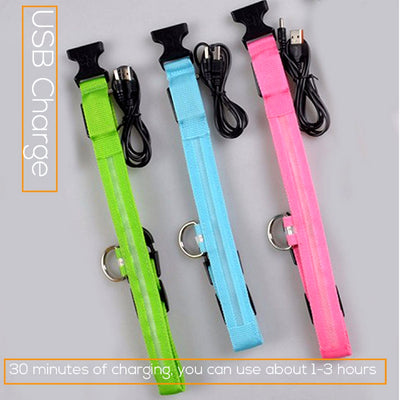LED Rechargeable Dog Collar USB Charge