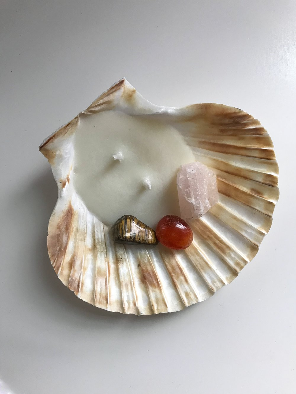Seashell Candle/Jewelry Dish - Double Wick