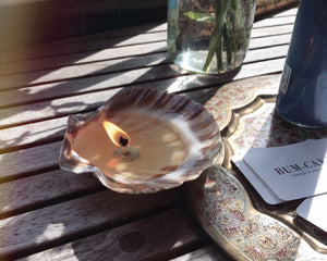 Seashell Candle/Jewelry Dish - Single Wick
