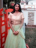 Pista Green Net Lehenga with Pink Blouse
