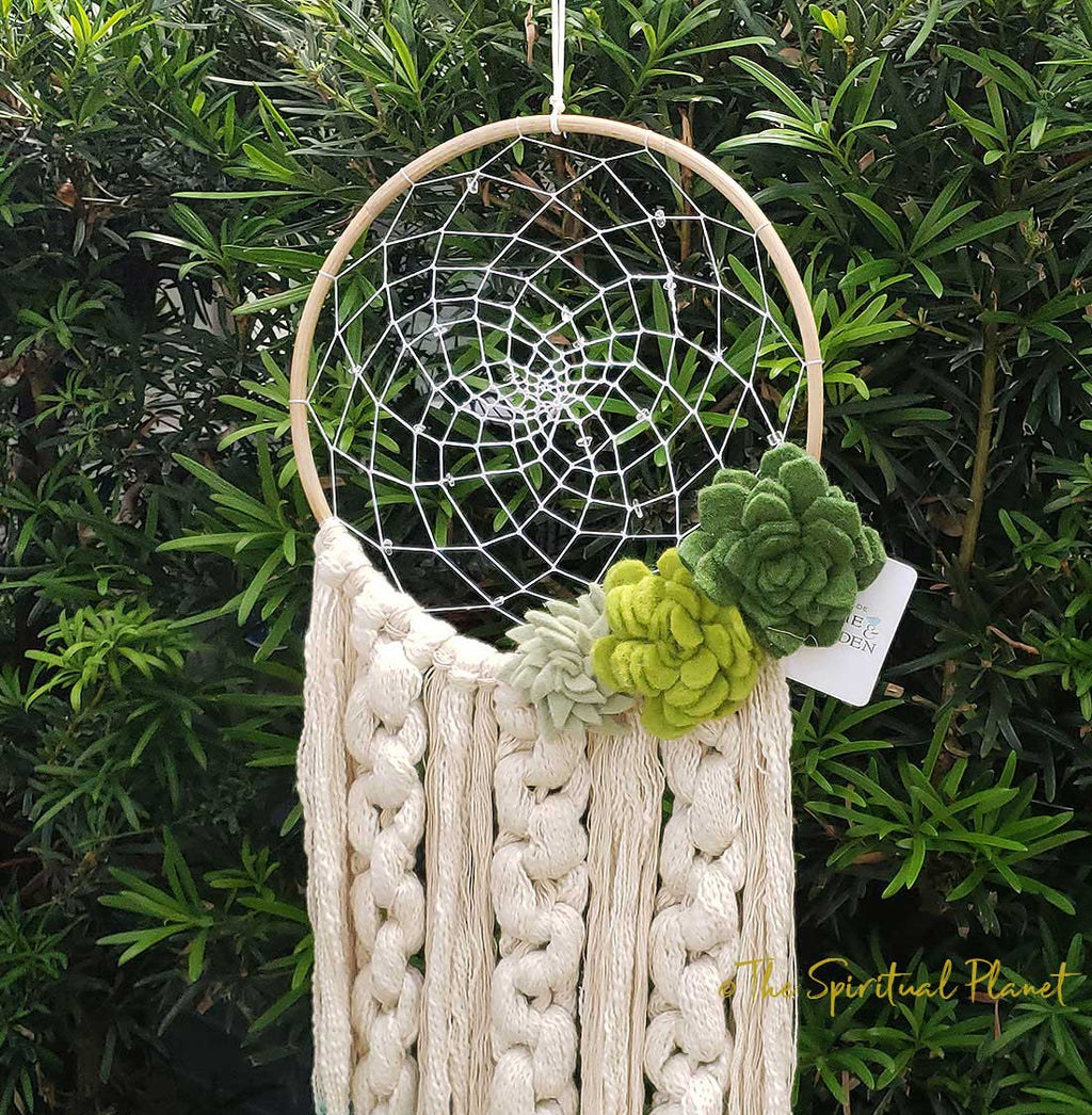 Desert Romance Dreamcatcher Succulent Dreamcatcher Dream Catcher Moon Dream Catcher Designs Macrame Large Dream Catcher Dreamcatcher