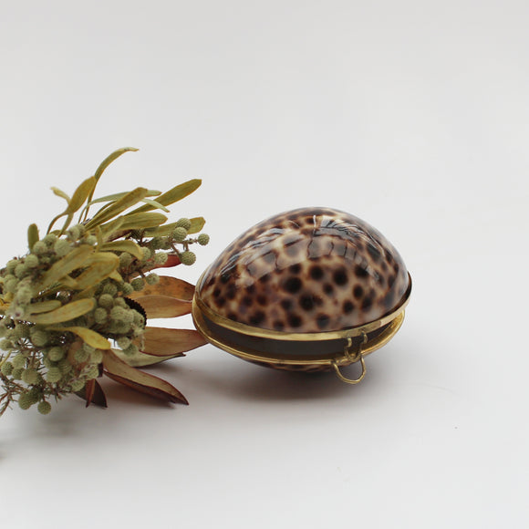 Leopard Shell Trinket Box