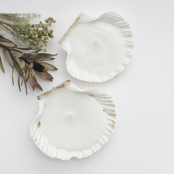 Shell Candle Set