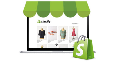 Fully Designed Shopify Stores