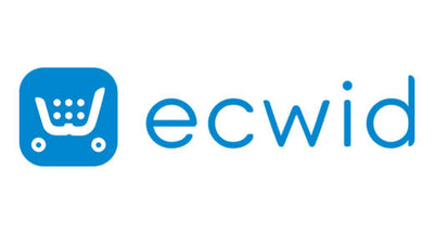 Fully Designed Ecwid Stores
