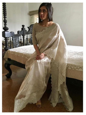 White Organza Embroidered Saree