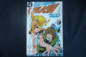 Flash 28 near mint    (b8) DC 1989