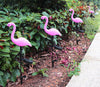Image of Flamingo Solar Garden LED Lamps