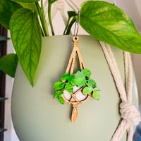 Hanging Out Macrame Dangles - Choose your top!