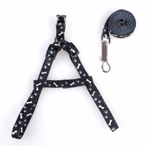 Nylon Small Dog Cat Collar and Leash 1.0cm Width Pet Harness Leads for Puppy Dogs Cats Cheap Pet Supplies Chihuahua Product