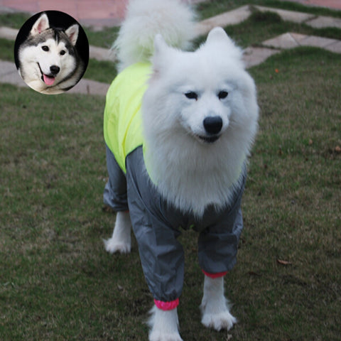 Reflective Waterproof Cloth Pet Casual Puppy Cat Pet Dog Clothes Lapel Solid Cozy Jacket Free Shipping