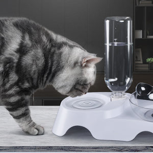 Anti Slip Cat Feeder Tray - Harris & Bains Pet Shop