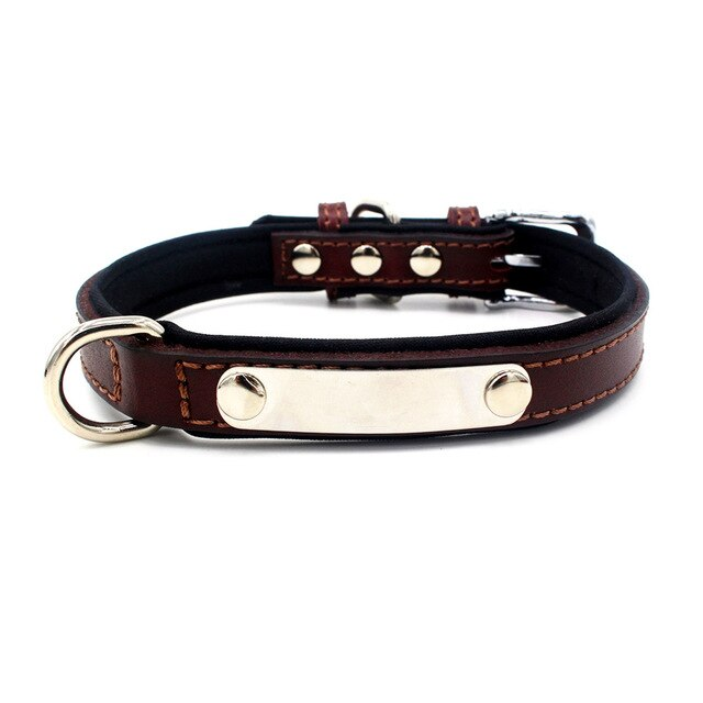 Personalised Leather Collar With ID Tag - Harris & Bains Pet Shop