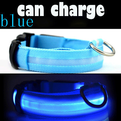 LED Dog Collar Safety Light-up Flashing Glow in the Dark USB Recharge - Harris & Bains Pet Shop