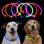 Glow Light Collar Buckle Adjustable For Night Safety - Harris & Bains Pet Shop