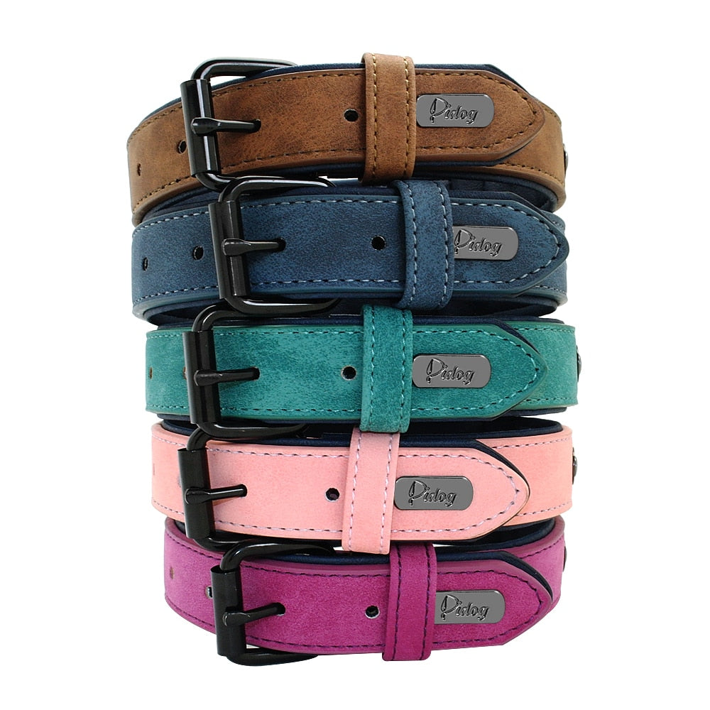 Leather Padded Dog Collar Adjustable For Small Medium Large Dogs - Harris & Bains Pet Shop