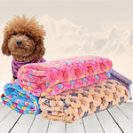 Star Pattern Coral Fleece Pet Blanket - Harris & Bains Pet Shop