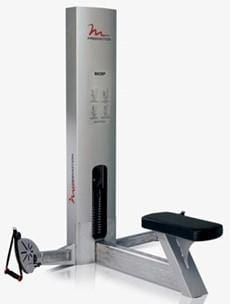 FreeMotion Bicep GZFM6002 (Used)
