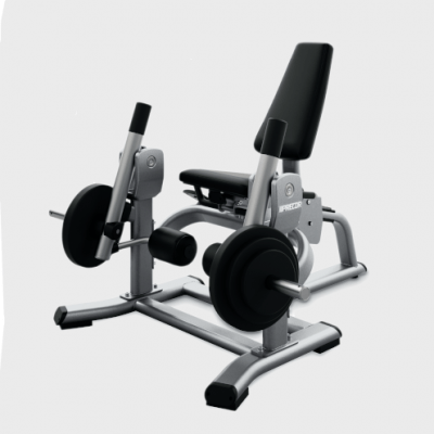 Precor Discovery Series Leg Extension DPL 560 (Demo Unit)