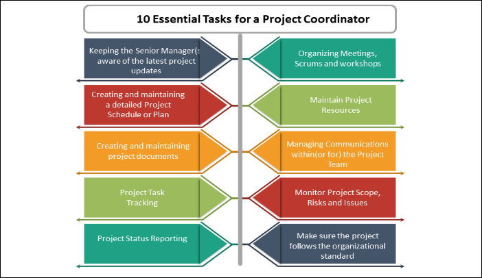 10 Essential Tasks for a Project Coordinator