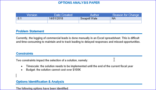 Options Analysis Word and Excel Example