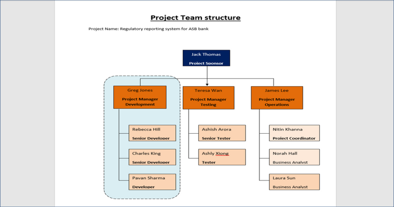 Project Team Structure Word Template
