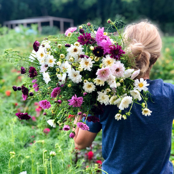 Reckon Creates: Flower Arranging with Natasha McCrary of 1818 Farms