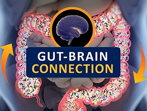 Gut Bacteria May Be Linked to Mood, Behavior in Healthy Humans