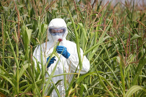 Glyphosate Herbicide Causes Antibiotic Resistant Bacteria, Kidney Disease, and Infertility