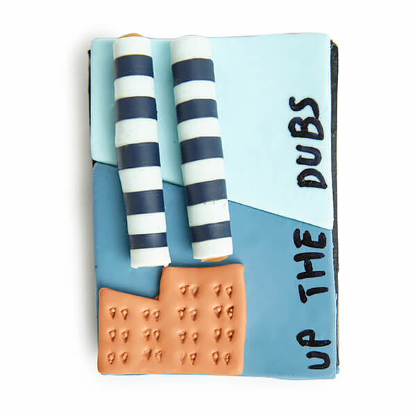 Up the dubs fridge magnet - quirky Irish gifts