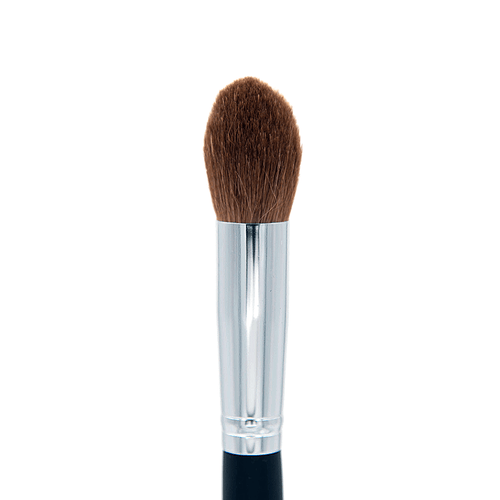 Professional Pointed Blush Brush