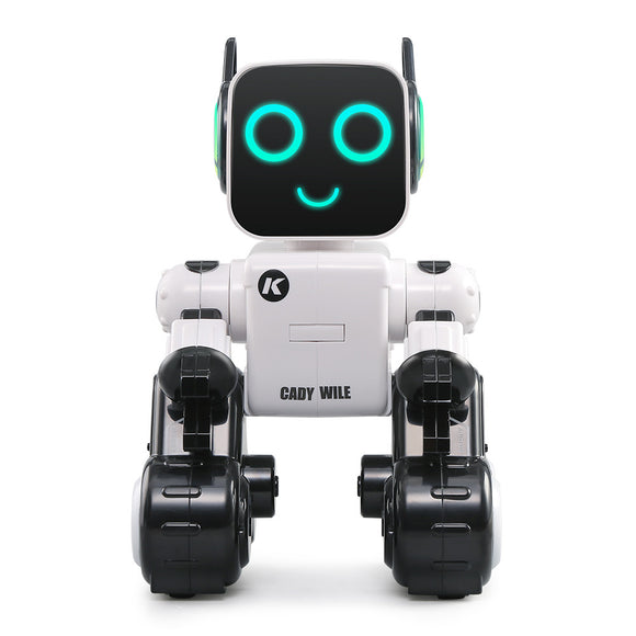 Intelligent Remote Control Robot