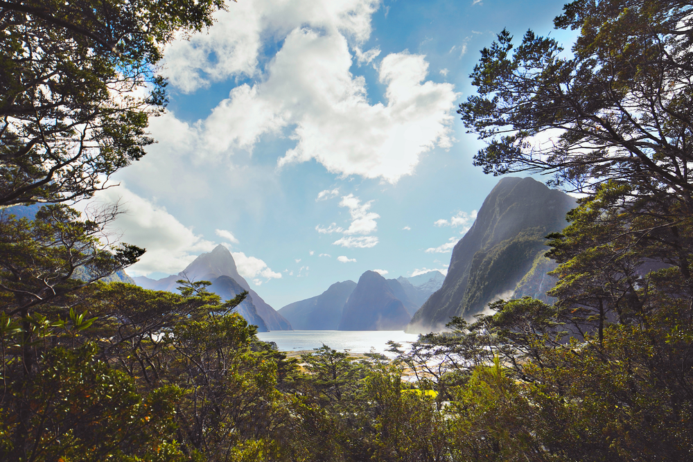 New Zealand | Milford Sound