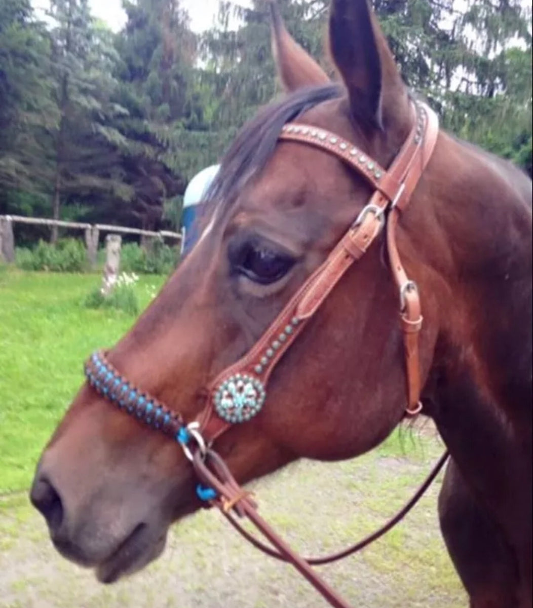 side pull hackamore attachment with a whoa dark walnut brown ...mini to draft