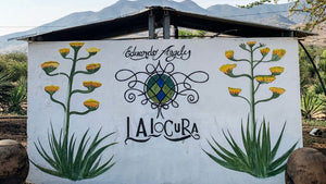 A Tour with Oaxacking: Mezcal Lalocura by Mezcal Reviews