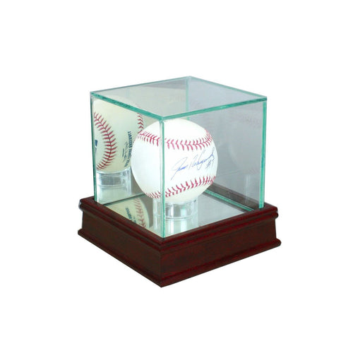 Baseball Glass Display Case