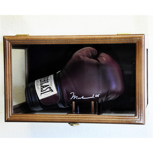 Boxing Glove Wood Display Case Wall Mount